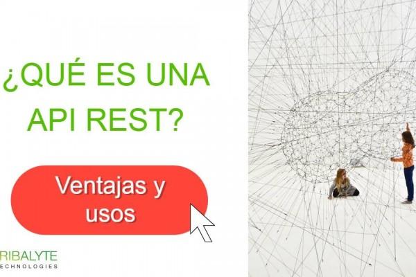 API REST | ¿Qué es una API REST? Características y usos - Tribalyte Technologies