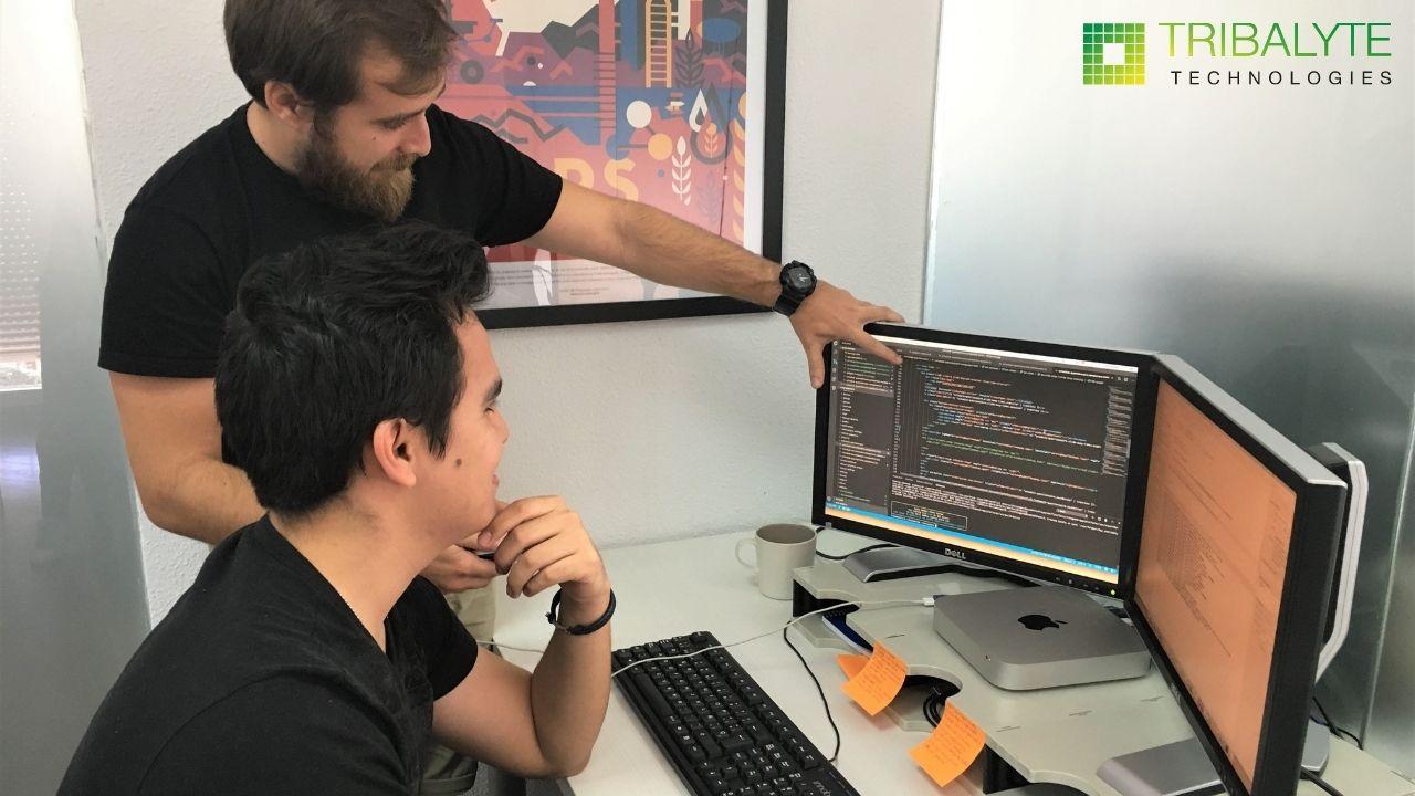 Software Empresarial - Tribalyte Technologies empresa de software Madrid