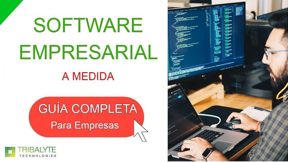 Software empresarial - Tribalyte Technologies - Desarrollo de software a medida en Madrid
