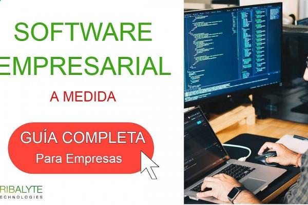 Software empresarial - Tribalyte Technologies - Desarrollo de software a medida en Madrid | Alessandro Barbera Formica