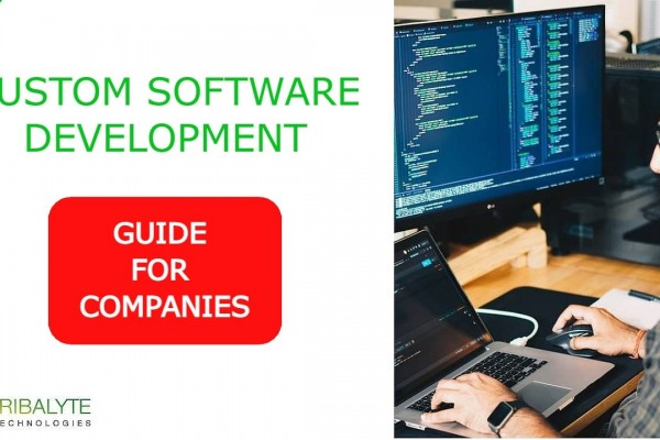 Custom Software Development | The complete GUIDE for COMPANIES | Tribalyte Technologies