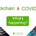 Blockchain and COVID-19 | What's happening? What's next? | Alessandro Barbera Formica | Tribalyte Technologies