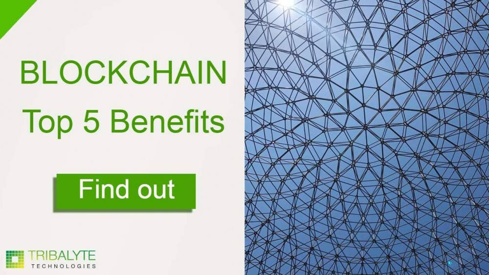 Blockchain benefits   Alessandro Barbera Formica   Tribalyte Technologies