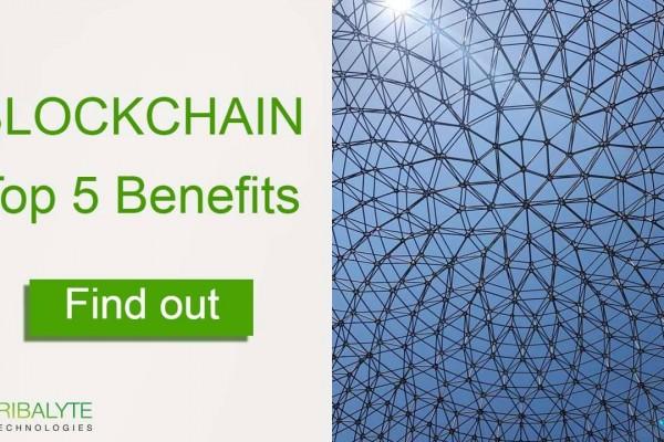 Blockchain benefits | Alessandro Barbera Formica | Tribalyte Technologies